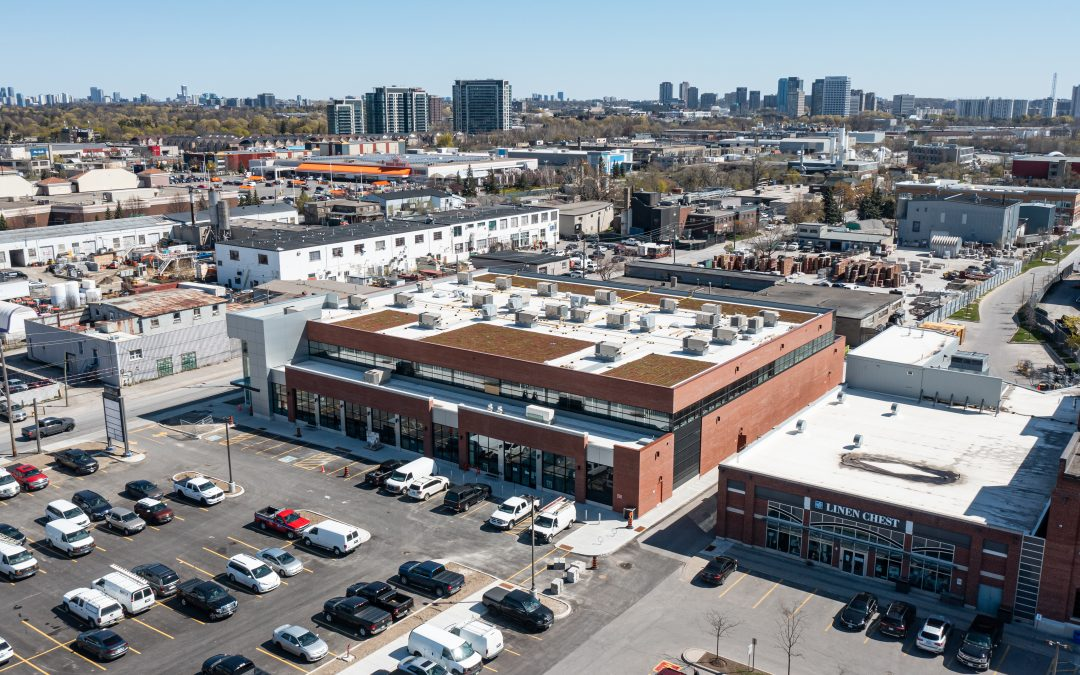 Green Series: Adding Green Roofs into your Commercial Build