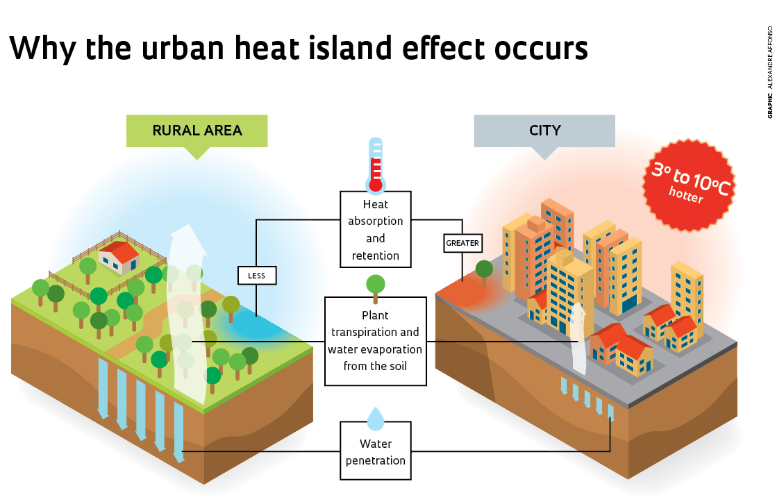 A diagram explaining how the urban heat island effect occurs between rural and urban areas.
