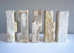 White/yellowish MYCELIUM bricks.